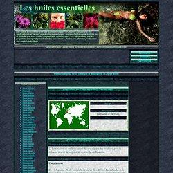 Laurier noble - Huile essentielle, fiche technique, descriptif, usages et applications