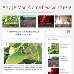 Huile essentielle de Ravintsara, un trésor Malgache - Mon aromatherapie