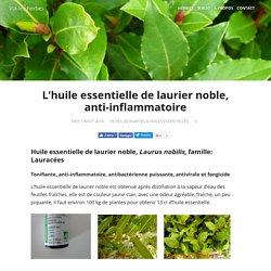 L'huile essentielle de laurier noble, anti-inflammatoire