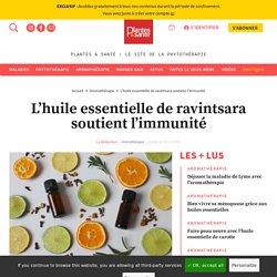 L'huile essentielle de ravintsara soutient l'immunité