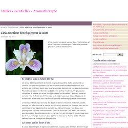 L'iris, une fleur bénéfique pour la santé
