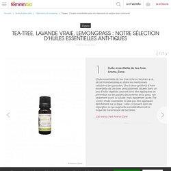 Tiques : 7 huiles essentielles pour les repousser et soigner leurs morsures
