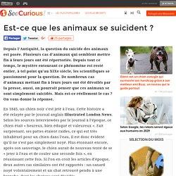 Est-ce que les animaux se suicident ?