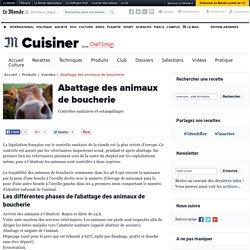 Abattage et estampillage des animaux de boucherie - Technologie culinaire