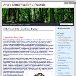 Esthétique de la complexité fractale - Arts / Numérisation / Fractals
