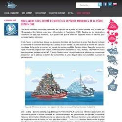 Nous avons sous-estimé de moitié les captures mondiales de la pêche depuis 1950