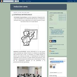 induccion sena: ESTRATEGIAS METEDOLOGICAS