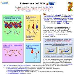 Estructura del ADN - Contenidos