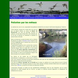 L'estuaire de la Gironde: un milieu naturel - Pollution par les métaux