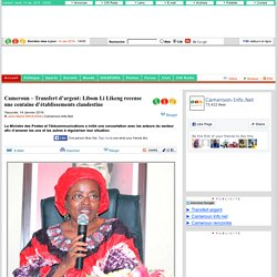 Cameroun – Transfert d'argent: Libom Li Likeng recense une centaine d'établissements clandestins