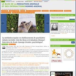 La médiation équine en établissements de psychiatrie infanto-juvénile: état des lieux et évaluation clinique! Interview de Jessie Ansorge-Jeunier, psychologue!