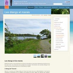 Les étangs et marais - Office de Tourisme du Haut Pays Bigouden