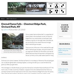 Eternal Flame Falls – Chestnut Ridge Park, Orchard Park, NY