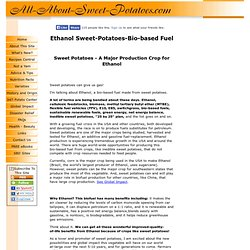 Ethanol Sweet-Potatoes-Bio-based Fuel