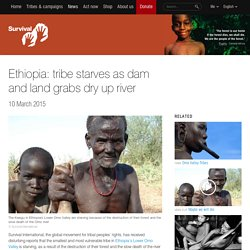 Ethiopia: tribe starves as dam and land grabs dry up river