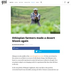 Ethiopian farmers made a desert bloom again