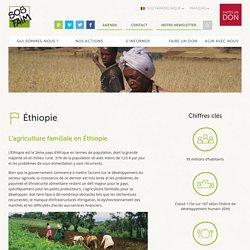 Éthiopie – SOS Faim Belgique