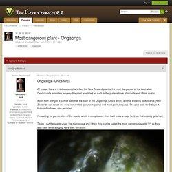 La plupart des plantes dangereux - Ongaonga - ethnobotanique - Le Corroboree