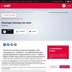FRANCE INTER 10/02/21 LA TERRE AU CARRE - Ethnologie historique des chats
