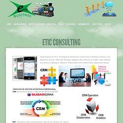 eTIC Consulting