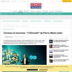 Télé : L'Etincelle de Pierre-Marie Lledo, le programme de France 3
