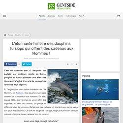 L'étonnante histoire des dauphins qui offrent des cadeaux aux Hommes !