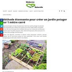 Méthode étonnante pour créer un jardin potager sur 1 mètre carré