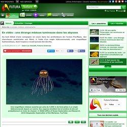 En vidéo : une étrange méduse lumineuse dans les abysses