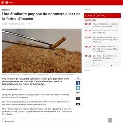 Une étudiante propose de commercialiser de la farine d'insecte