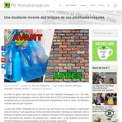 Une étudiante invente des briques de sac-plastiques recyclés