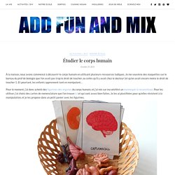 Étudier le corps humain - Add fun and mix