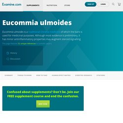 Eucommia ulmoides - Scientific Review on Usage, Dosage, Side Effects