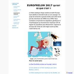 Eurofrelon français - Eurofrelon