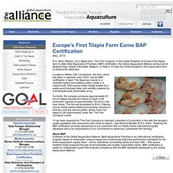 GAALLIANCE - MAI 2014 - Europe's First Tilapia Farm Earns BAP Certification