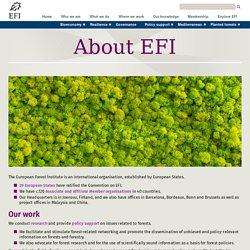 European Forest Institute