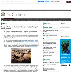 CATTLE SITE 26/06/20 European Parliament starts animal transport inquiry after reported welfare breaches