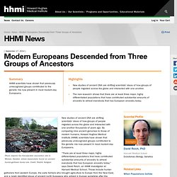 Modern Europeans Descended from Three Groups of Ancestors