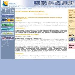 Site du Lycée Saint-Cricq - Section Européenne Mathématiques Anglais
