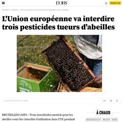 L'Union européenne va interdire trois pesticides tueurs d'abeilles