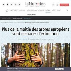 Plus de la moitié des arbres européens sont menacés d'extinction
