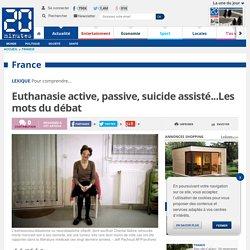 Euthanasie active, passive, suicide assisté...Les mots du débat