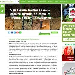 Guía técnica de campo para la evaluación visual de los suelos. Textura, estructura, porosidad... - PortalFruticola.com