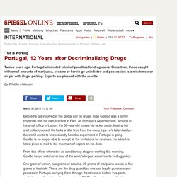 Evaluating Drug Decriminalization in Portugal 12 Years Later