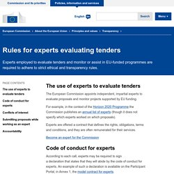 Rules for experts evaluating tenders