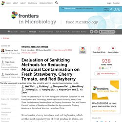 FRONTIERS IN MICROBIOLOGY 05/12/17 Evaluation of Sanitizing Methods for Reducing Microbial Contamination on Fresh Strawberry, Cherry Tomato, and Red Bayberry