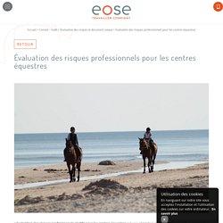 Évaluation des risques professionnels pour les centres équestres - Conseil en évaluation des risques au travail à Avignon - EOSE