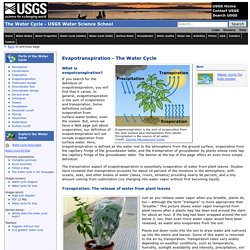 Evapotranspiration - The Water Cycle, from USGS Water-Science School