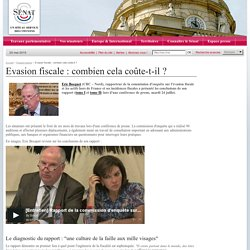 Evasion fiscale : combien cela coûte-il ?- Sénat