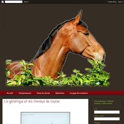 La génétique et les chevaux de course