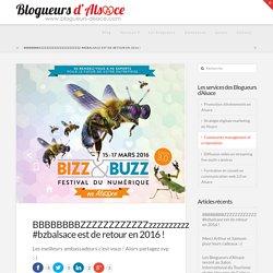 Blogueurs d'Alsace E-réputation événementielle, stratégie marketing digitale en Alsace, community management en Alsace, formation à l'utilisation des réseaux sociaux en Alsace
